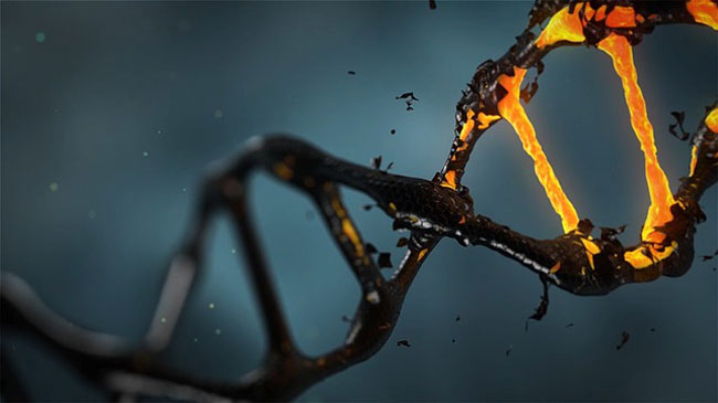 528-hz-dna-proof