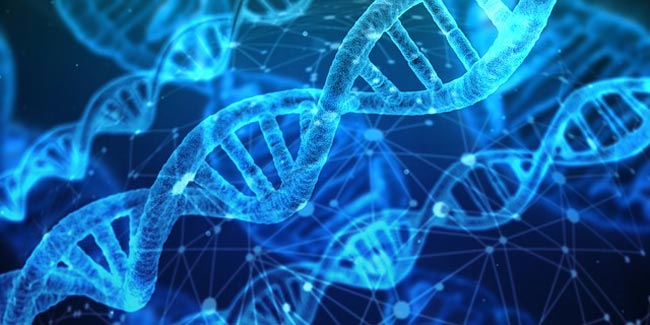 528 Hz DNA Repair Explained